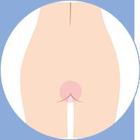 body_oline